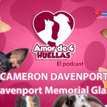 Amor de 4 Huellas – Davenport Memorial Glass