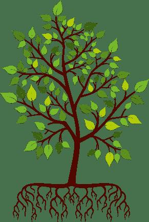 pohon sipwriter