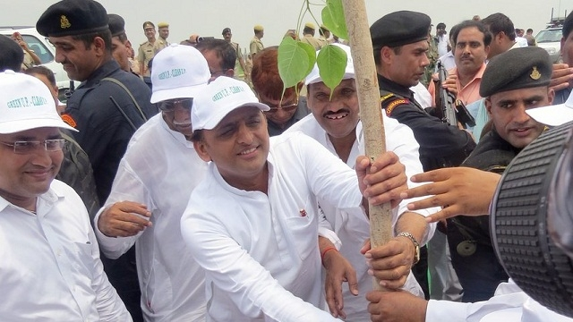tree-plantation-up