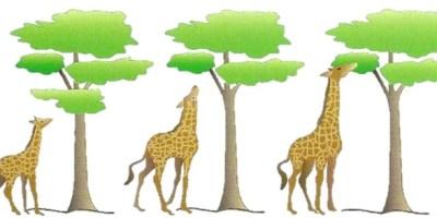 Kötülük Problemine Evrimsel Bir Bakış