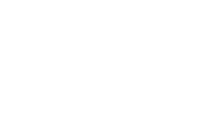 nss-auto-detailing-logo