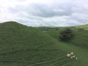 Image of motte at Painscastle in Radnorshire/Powys