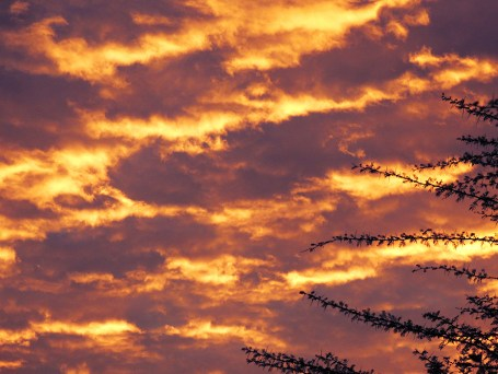 lake-elementaita-sunset