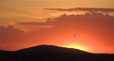 masai-mara-sunset-3