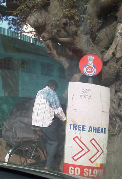 tree-ahead