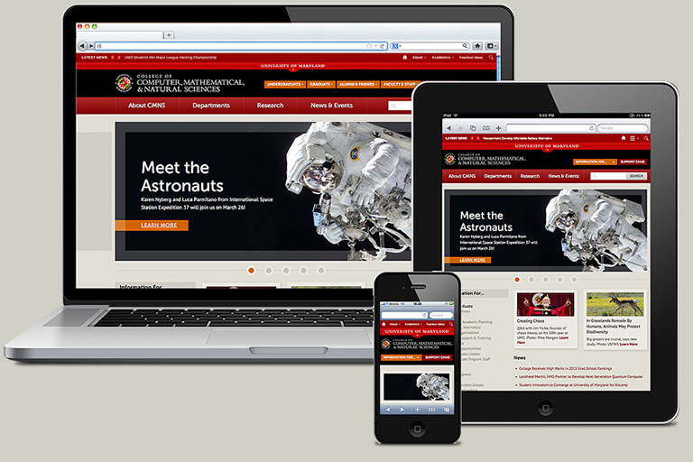 Sirius Innovations Responsive Websites