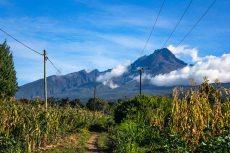 Kalakala_Kilimanjaro-332