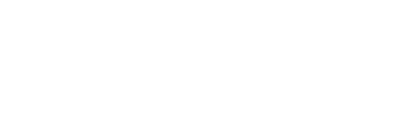 siron technologies group inc