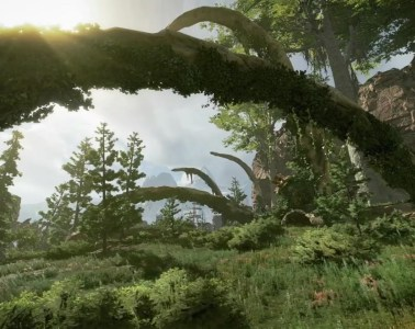Apex Legends forest location