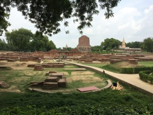 The excavation site at Saranath. The large brick tower in the distance is the Dhamek Stupa and once held relics of the Buddha inside of it.