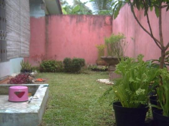 taman di bagian belakang rumah