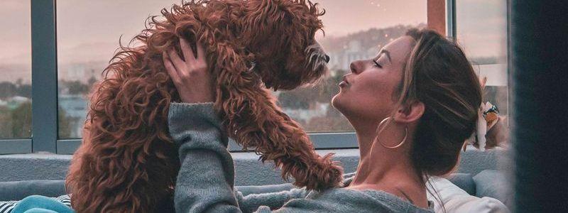 ¿Sabes cuál es la misión de tu perro contigo?