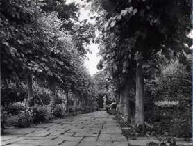 A gardener, probably Sidney Neve, weeding in the Lime Walk. Copyright Adam Nicolson.