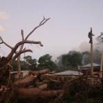 El 99.89 % de las viviendas afectadas por huracanes ya tienen energía