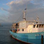 Sector pesca con grandes perspectivas de crecimiento