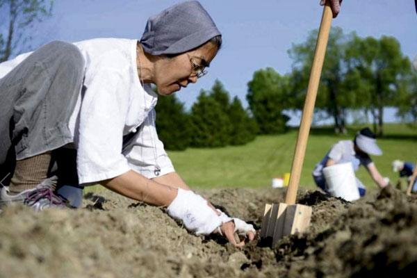Sister-Hechun-Park-SCSH-planting-potatoes