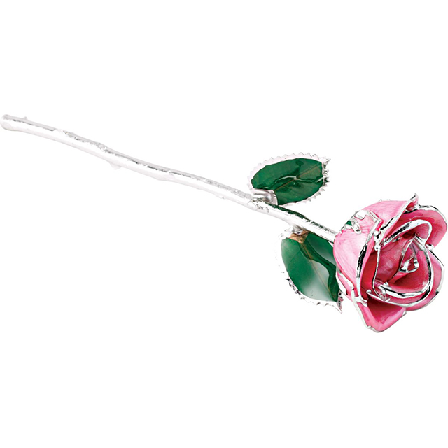 Pink Rose With Platinum Trim 1