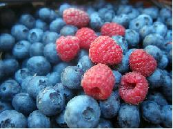 Delicious blueberries