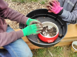 Mixing clay, compost and seeds.