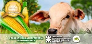 productividad agropecuaria v6