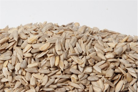 No Shell Raw Sunflower Seeds 16 oz Bag from Nuts in Bulk