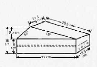 Ultrasound Doppler Flow Directional Discrimination Device