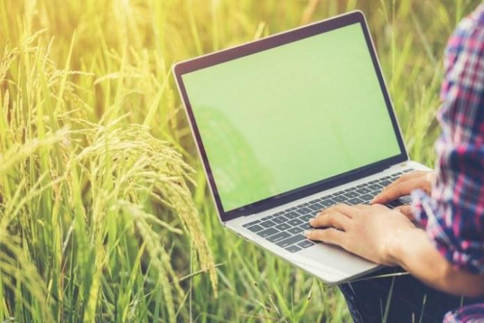 Governo lança serviço digital de solicitação de transferência do benefício Garantia-Safra