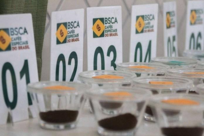 Cafeicultores de arábica já podem se inscrever no Cup of Excellence 2020