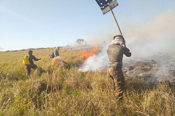 Forças Armadas atuam em combate a incêndios no Mato Grosso e no Pará