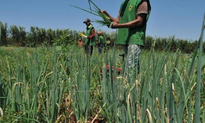 Acordo de cooperação promoverá a agricultura familiar em destinos de turismo rural