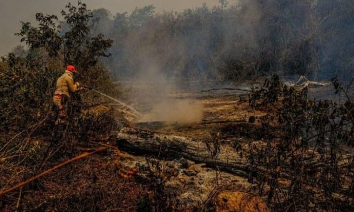 ICMBio recebe reforço de R$ 19 milhões para combater incêndios florestais