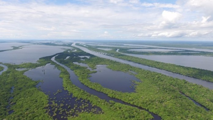 Embaixadores internacionais vão conhecer de perto o trabalho do Governo Federal na Amazônia