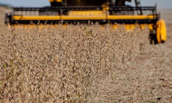Cerealistas poderão comercializar matéria-prima para Selo Combustível Social