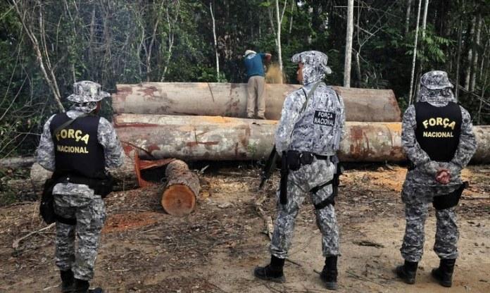 Força Nacional de Segurança Pública reforça combate a crimes ambientais na Amazônia Legal