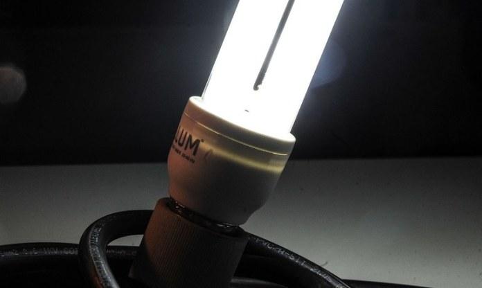 Campanha sobre consumo consciente destaca ações para economia de energia