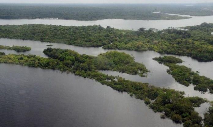 Forças Armadas combaterão delitos ambientais na Amazônia Legal
