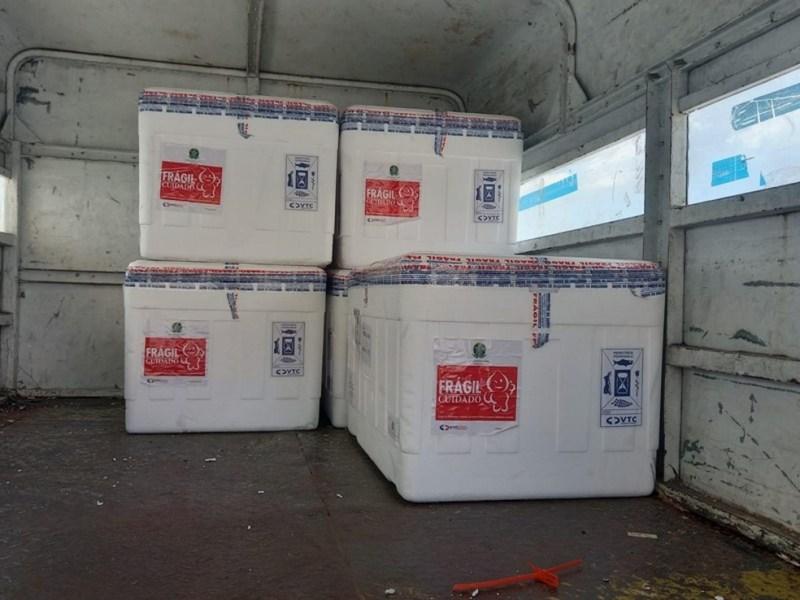 Vacinas chegaram no ES — Foto: Divulgação/SESA