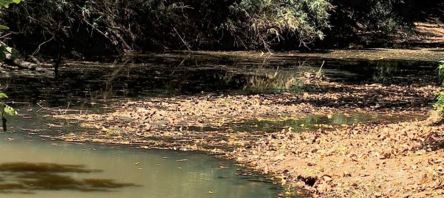 Rio Santa Maria do Doce está com 3% da vazão esperada para o período no interior do ES