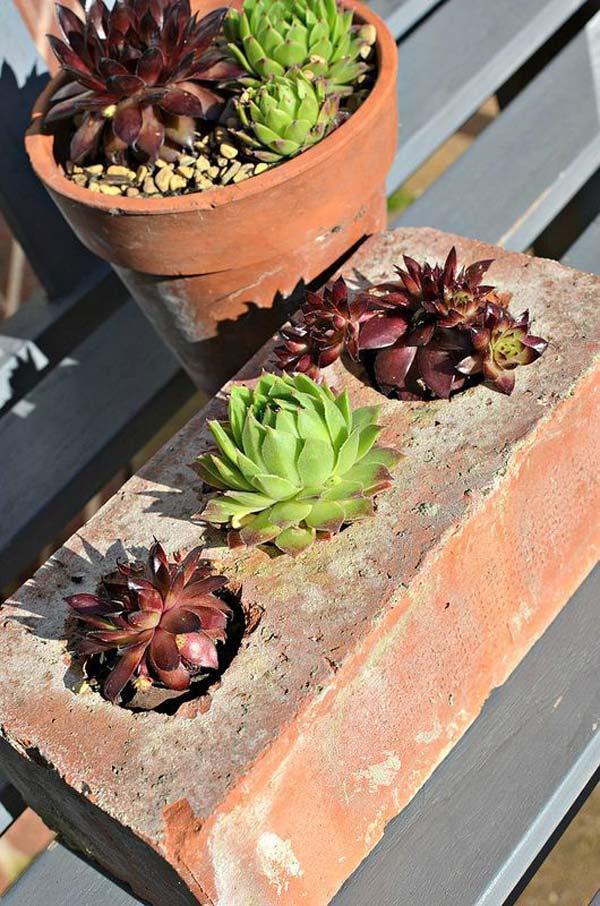 cool diy ideas creating garden