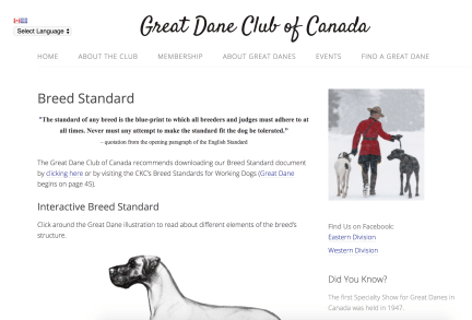 Preview of Great Dane Club of Canada website