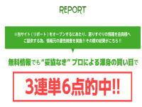 report・リポート|競馬情報会社口コミ