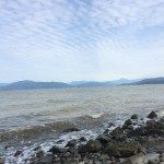 2.Tag – Vancouver City