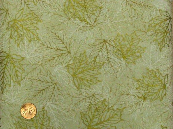 Fabric Robert Kaufman Shades of the Season
