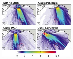 The researchers simulated earthquakes with magnitudes between 9.0 and 9.6 originating at different locations along the Aleutian-Alaska subduction zone, and found that the unique geometry of the eastern Aleutians would direct the largest post-earthquake tsunami energy directly toward the Hawaiian Islands. The red circles are centered on Kaua'i and encircle the Big Island.  Credit: Rhett Butler