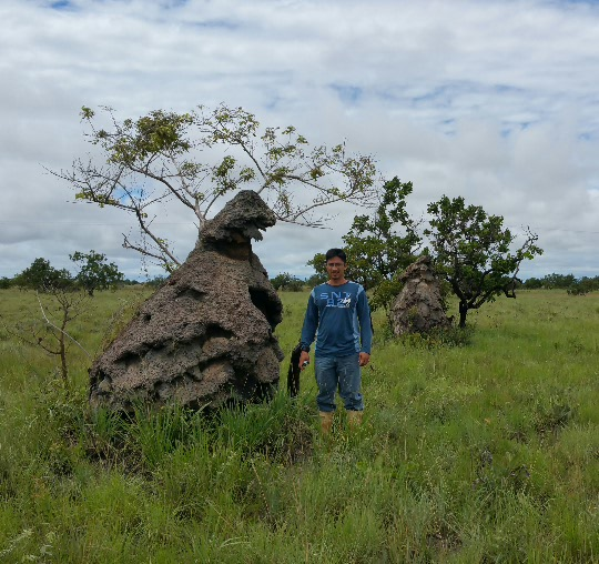 Termite mound and Luis