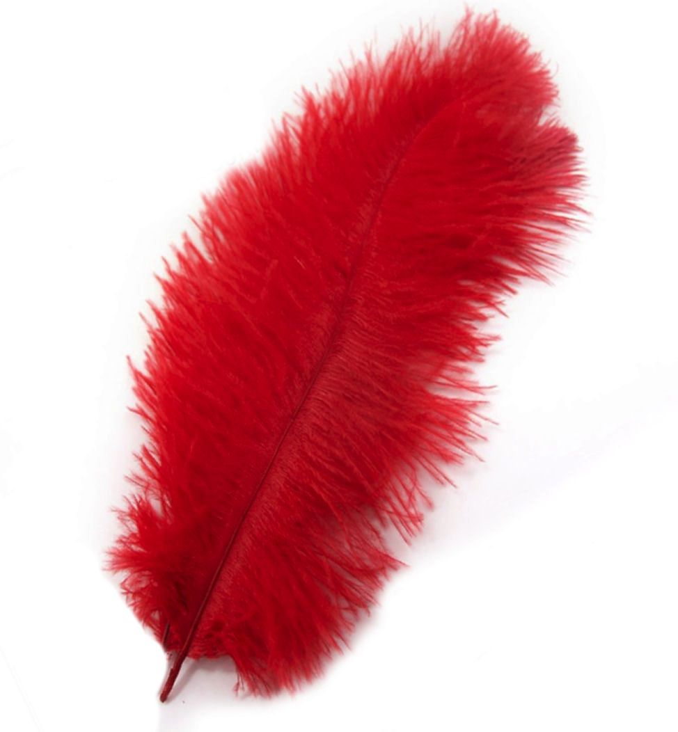 Red Ostrich Drab Feather