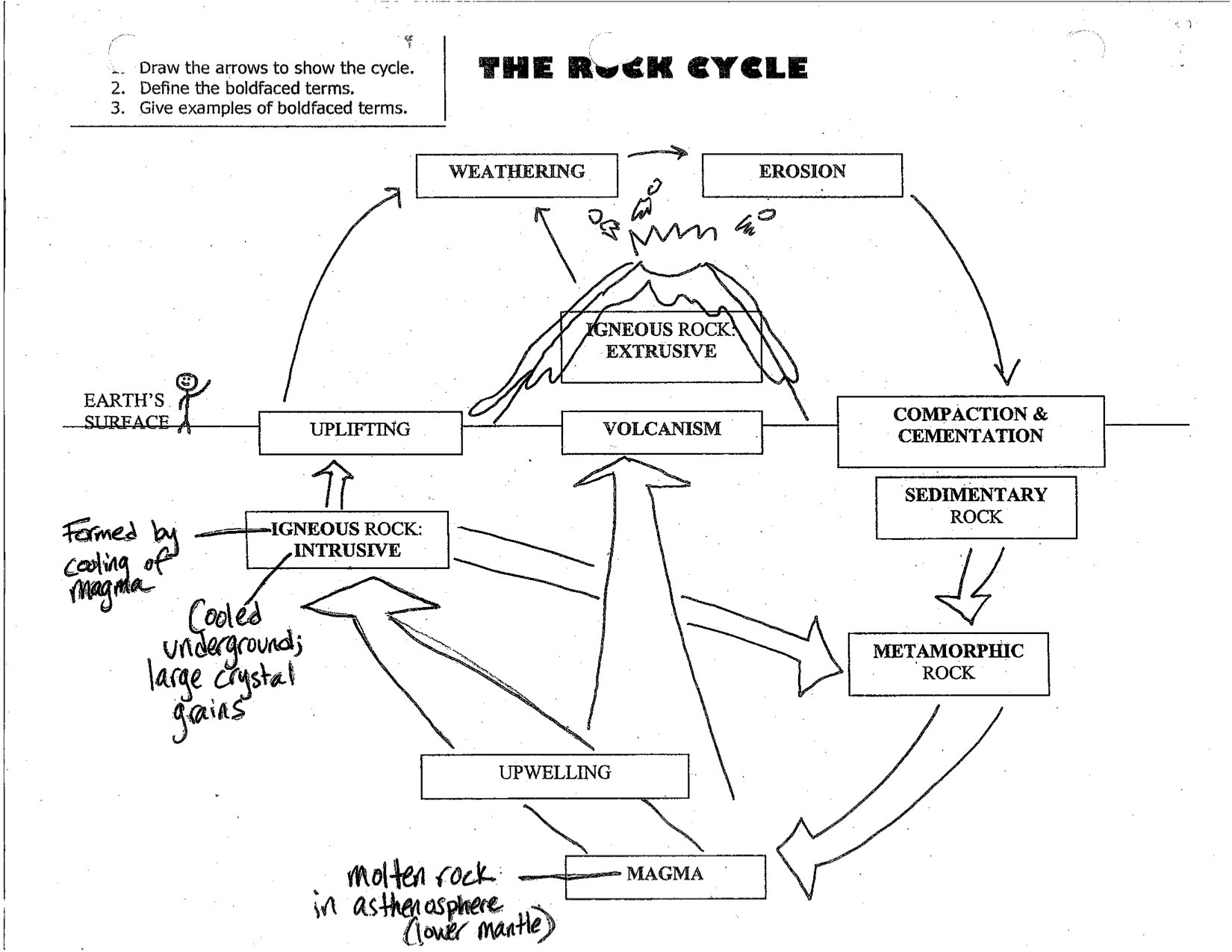 Worksheet Rock Cycle Diagram Worksheet Grass Fedjp