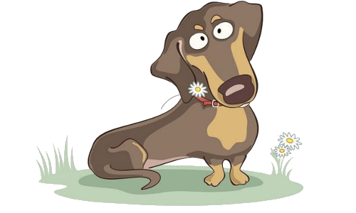 Dachshund Puppy  Dog Cartoon Images