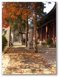 Buddhist temple pictures