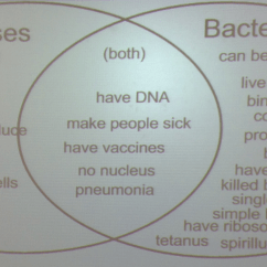 Eubacteria And Archaebacteria Venn Diagram Peptide Structure Simple Comparing Viruses Bacteria Wiring Diagrams Biology Carr Science 12 13 Rh Sites Google Com For Compare Contrast